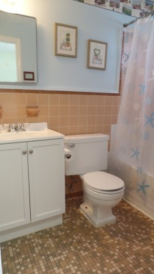 small bathroom in condo with seashell shower curtain, toilet, sink with white cabinets and pictures for decor.