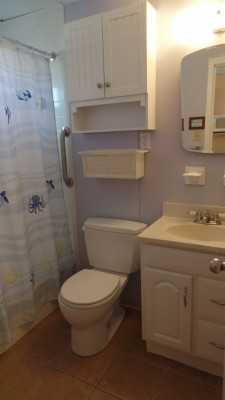 Beach condo bathroom with light purple walls, and a shower curtain with sea creatures on it